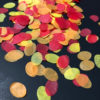 Wonderfall JR Fall Leaves Mix